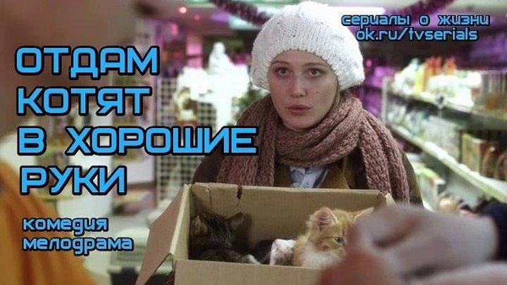 ОТДАМ КОТЯТ В ХОРОШИЕ РУКИ - отличная комедийная мелодрама
