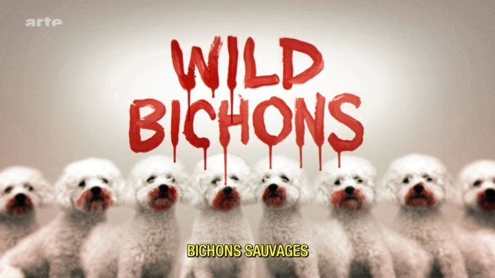 Дикие болонки / Wild Bichons (США 2013 HD) Комедийный ужастик, трэш, анимация, арт-хаус