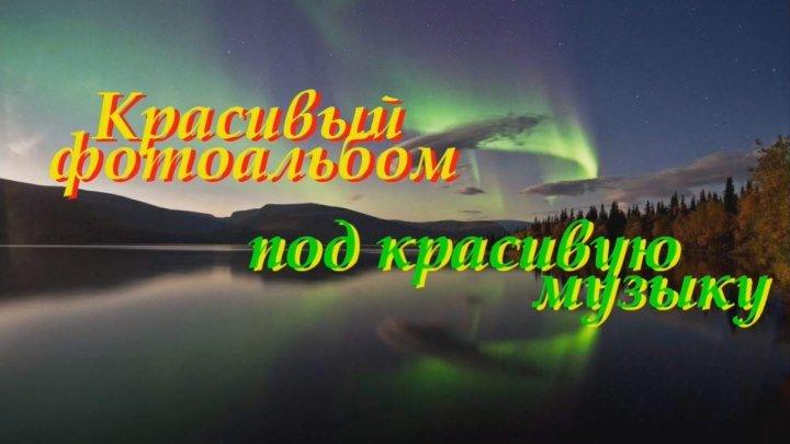В МИРЕ ЖИВОТНЫХ-2