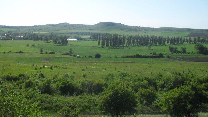 Деревня моя Балки...........