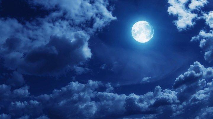 Людвиг ван Бетховен. Лунная соната (исполняет Владимир Горовиц)