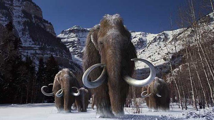 Титаны Ледникового периода (2013) Titans of the Ice Age (1 серия)