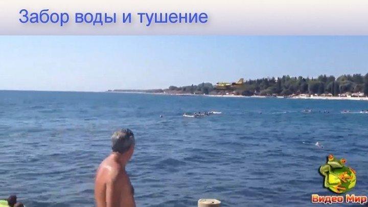 Забор воды и тушение самолётами #видео