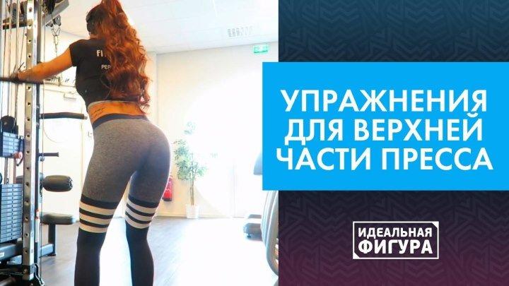 Упражнения для верхней части тела [Идеальная фигура]