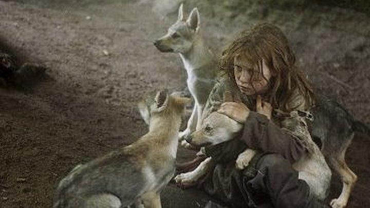 Выживая с волками. Драма