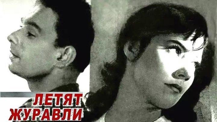 Летят журавли (1957) СССР драма, мелодрама, военный