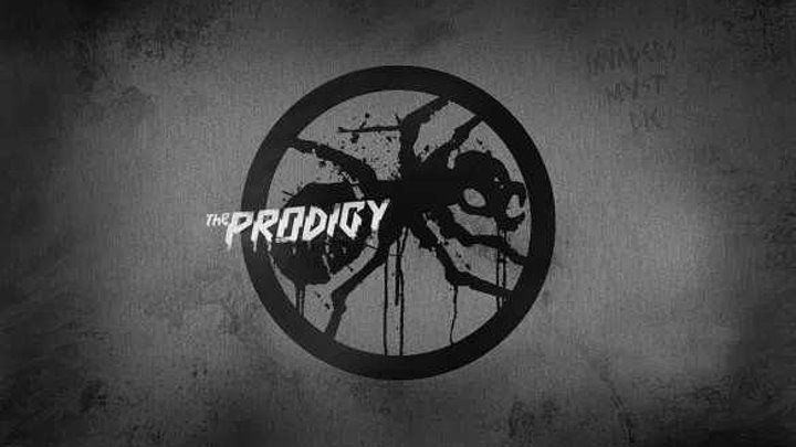 THE PRODIGY - LIVE AT ROCK AM RING. 2009 - https://ok.ru/rockoboz (7900)
