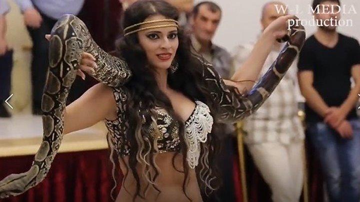 Восточный танец со змеей! Свадьба в Нальчике