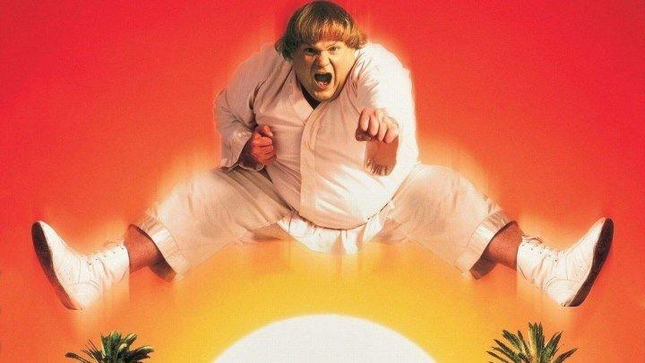 Ниндзя из Беверли Хиллз (1997).(приключенческий боевик, кинокомедия)