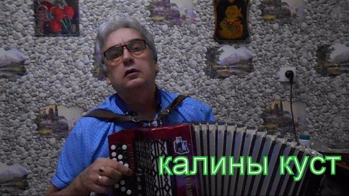 КАЛИНЫ КУСТ...Сергей Белобородов.