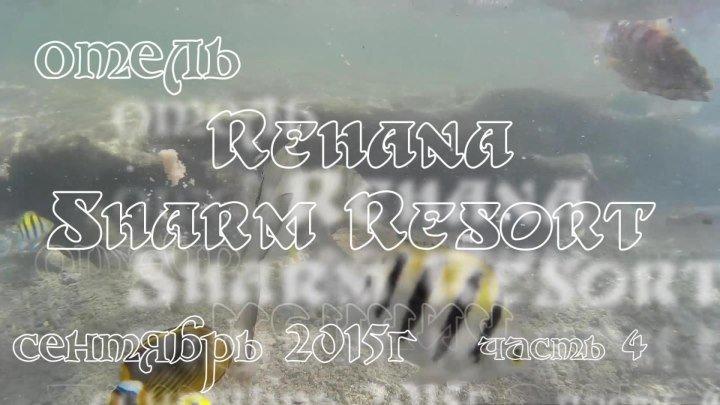 Египет,г.Шарм Эль Шейх,отель Rehana Sharm Resort,часть 4.Бассейн.