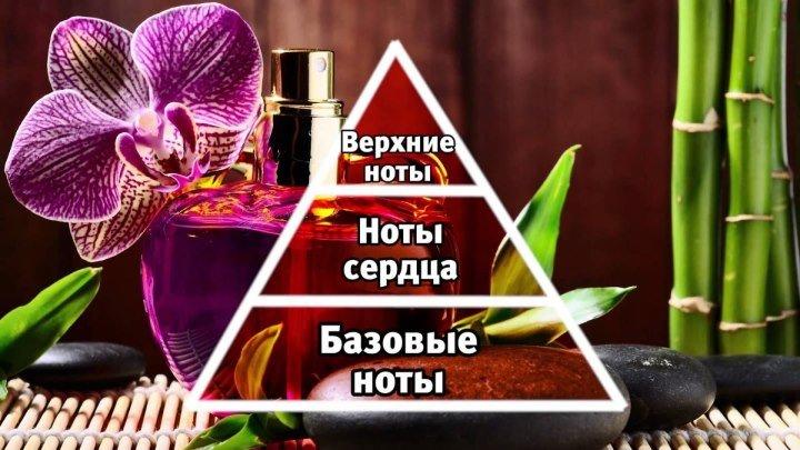 Как выбрать свой аромат!