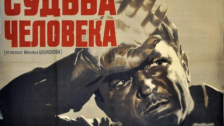 Судьба человека (1959) Драма, Военный 720p (Сергей Бондарчук, Павел Полунин, Зинаида Кириенко, Павел Волков, Юрий Аверин)