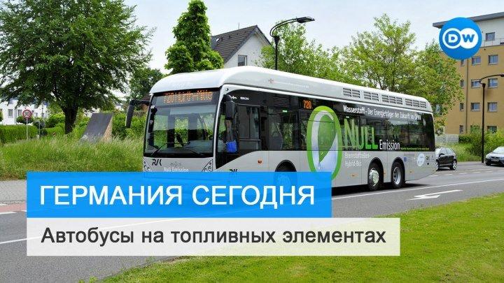 Немецкие города стали закупать автобусы на топливных элементах.