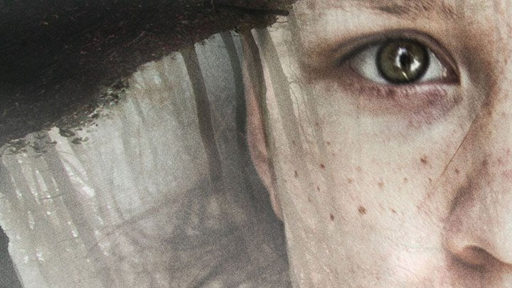 Девушка в тумане (2017)