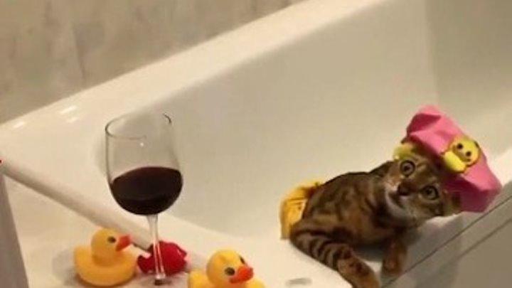 Когда мылся один дома и услышал какой-то шорох..