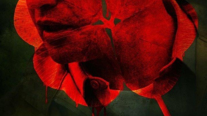 Красный клевер (2012)