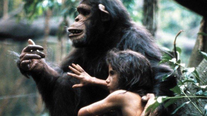 Грейстоук Легенда о Тарзане, повелителе обезьян. драма, приключения,