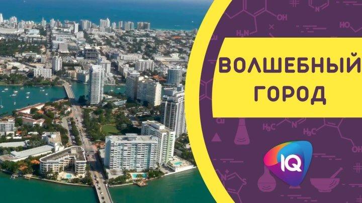 Волшебный город — Майами