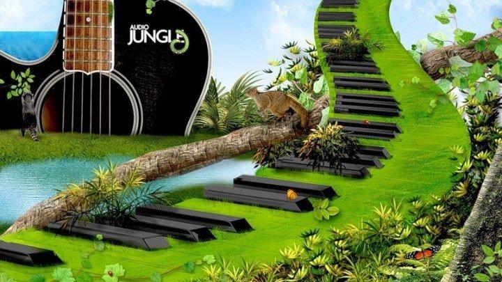 Красивая мелодия и природа!