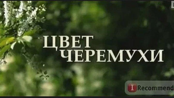 Цвет черемухи. Серия 3 (2012)...Мелодрама. Россия.