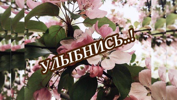 Улыбнись..! Христианские стихи « Я нашёл, что искал …» #ЕвгенийКрыгин