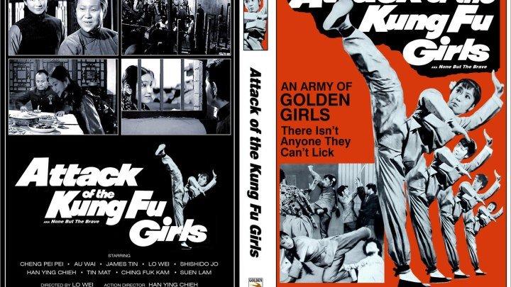 1973 Kung Fu Girl (1973) (English Subtitle) (Jackie Chan shoulder)