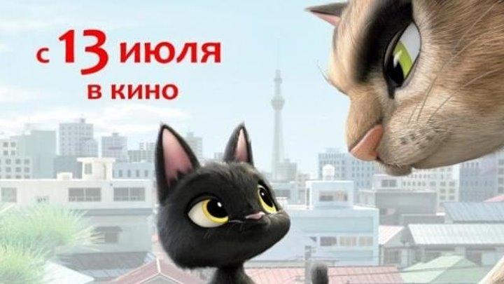 Жил-был кот _Черный кот Рудольф_ (2016_2017)Комедии, Приключения