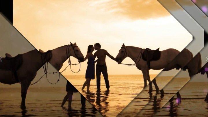 Краски заката, или почему так красивы лошади...