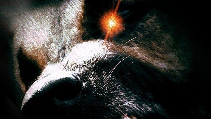 Воины Эллады - Ужас / фэнтези / триллер / приключения / Канада / 2009