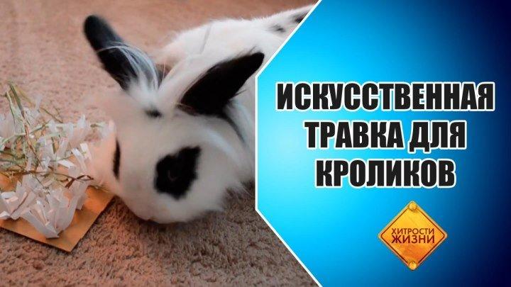Искусственная травка для кроликов