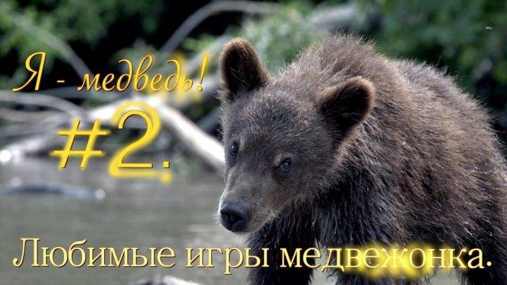 Любимые игры медвежонка ⁄⁄Я медведь! #2⁄⁄Ultra HD 4K video⁄⁄Детям о животных