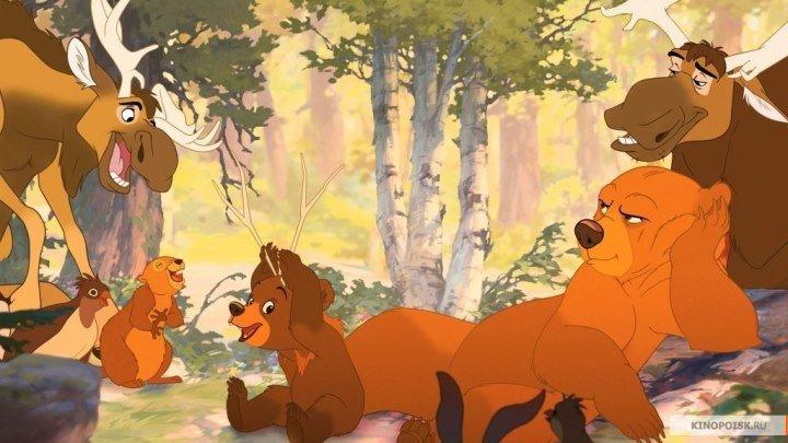 Братец Медвежонок. Мультфильмы приключения семейный