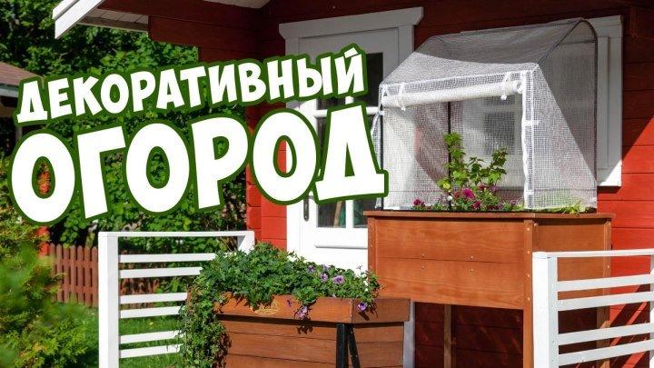 Декоративный Огород ✔️ Урожайный сад огород 🌱 Где купить