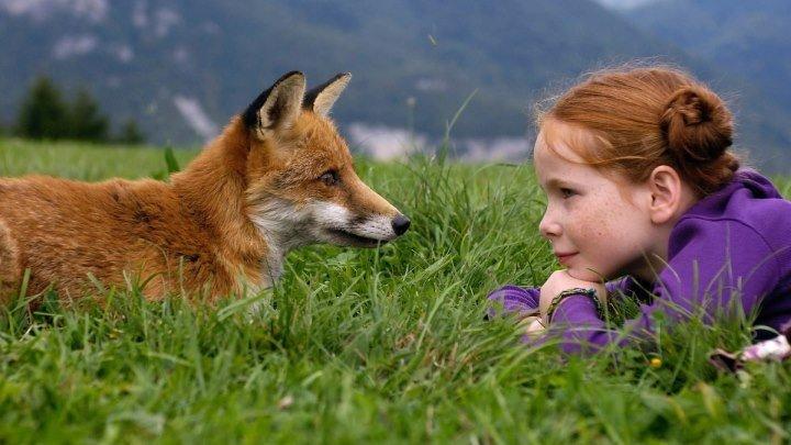 Девочка и лисенок (Франция 2007) Драма, Приключения, Семейный
