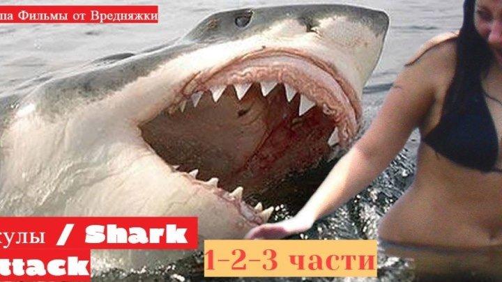 3 в 1 _ Акулы 1-2-3 _ 1999_2000_ 2002_ трилогия_ боевик, ужасы