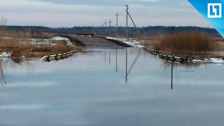 Воронежская область уходит под воду