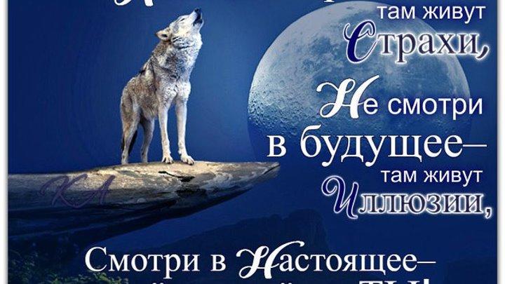 СУПЕРПРЕМЬЕРА ! Сергей Наговицын Воля ( клип Студии Елисейfilms 2016 ) (5)