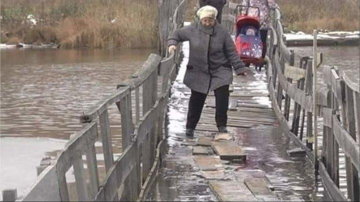 22 млн россиян за гранью нищеты и 35 млн бедных. Путинская стабильность