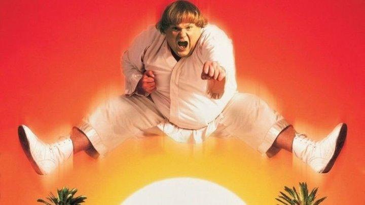 Ниндзя из Беверли Хиллз HD(1997) приключенческий боевик, кинокомедия