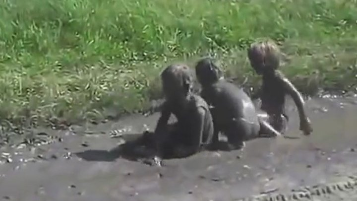 Прикол! Дети принимают грязи