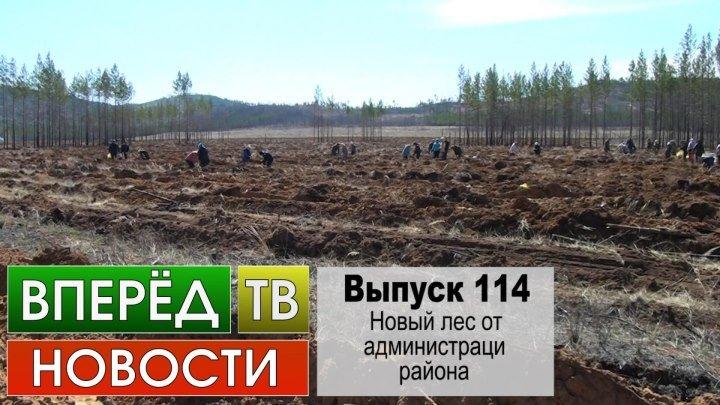 Выпуск 114. Новый лес от администрации района.