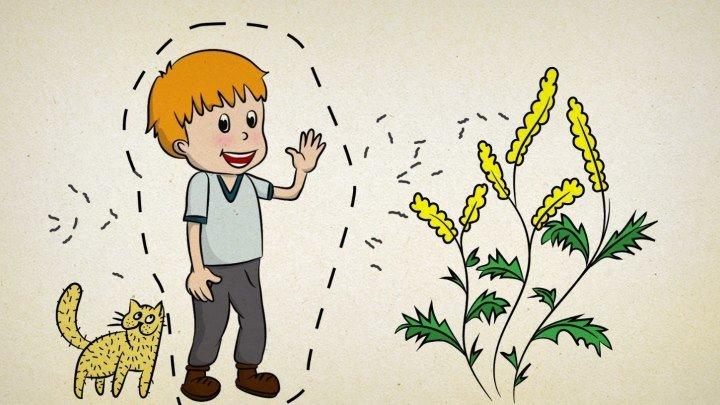 Детский Аллергия