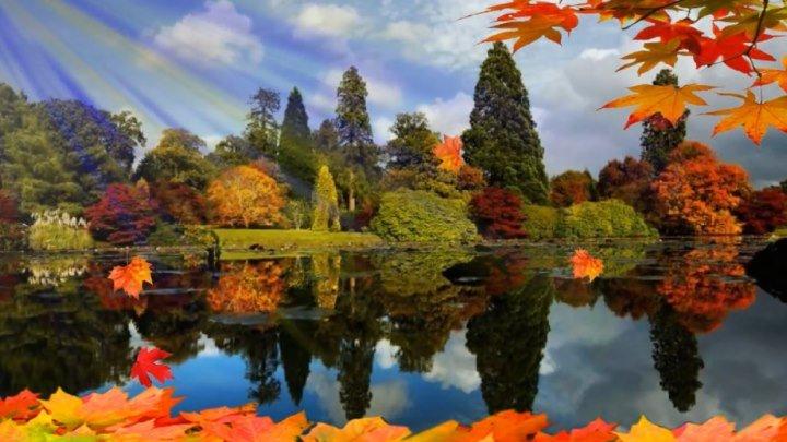 #НОСТАЛЬГИЯ - `Листья жёлтые над городом кружатся` - ОЧЕНЬ КРАСИВЫЙ КЛИП!!