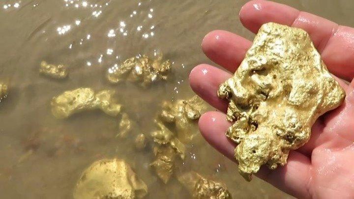 А вы думали что, много золота вокруг нас, это надо видеть и собирать