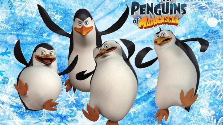 Пингвины Мадагаскара (Penguins of Madagascar) 2014