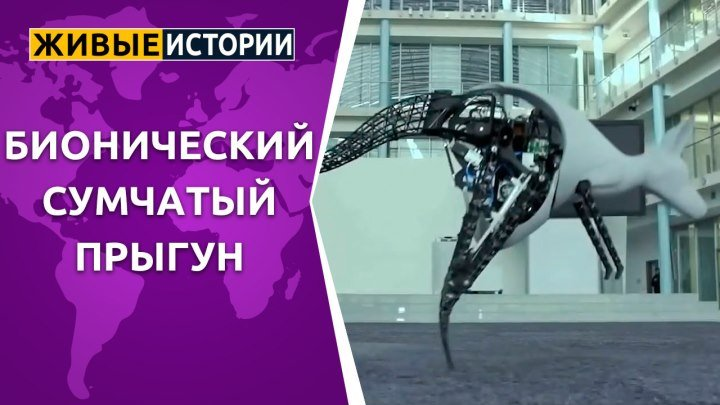 Бионический сумчатый прыгун
