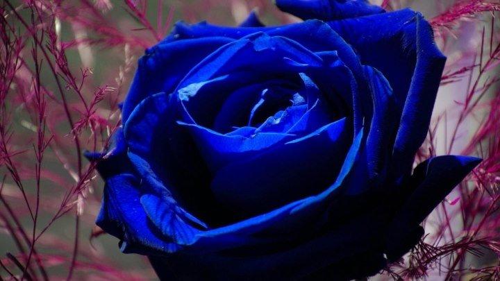 """""""Релакс - Синие оттенки"""" /Видео из фото: заказ в сообщения группы/"""