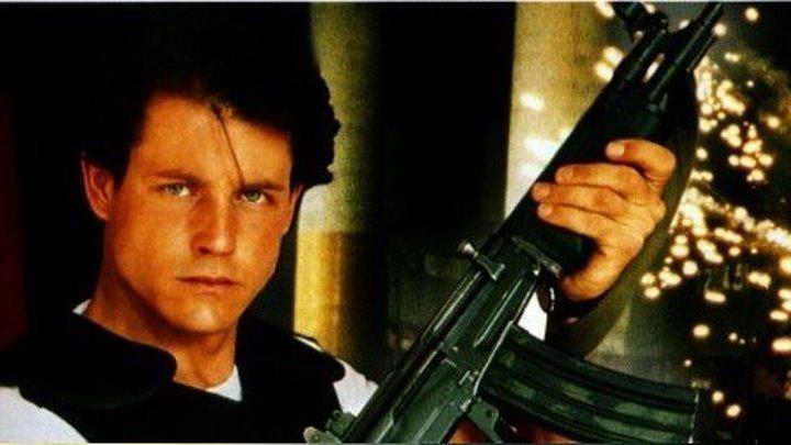 Точка удара (криминальная драма с Майклом Паре, Барбарой Каррера и Майклом Айронсайдом)   США, 1993