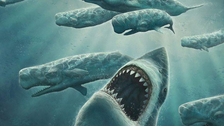 Хищники Аляски. Царство китов-убийц (2018). документальный